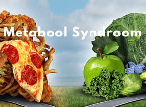 Metabool Syndroom