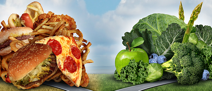 cholestorol verlagend dieet